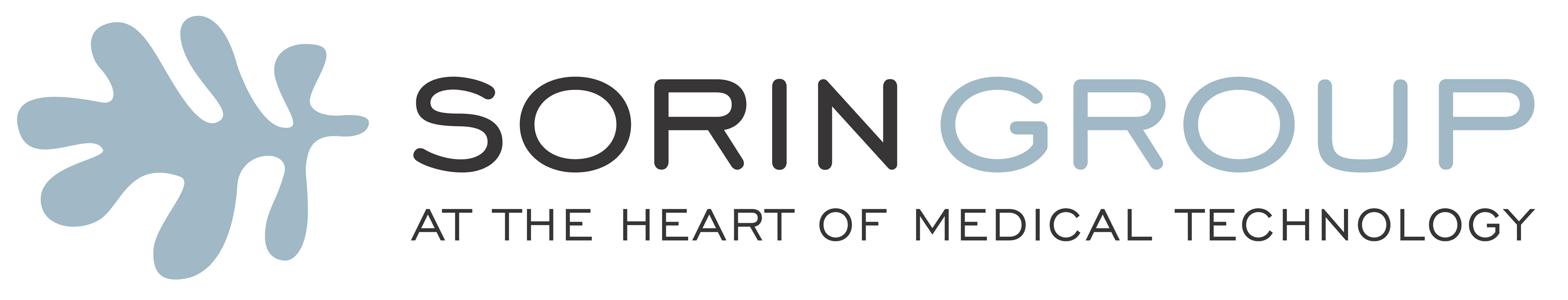 Sorin_Group_Payoff